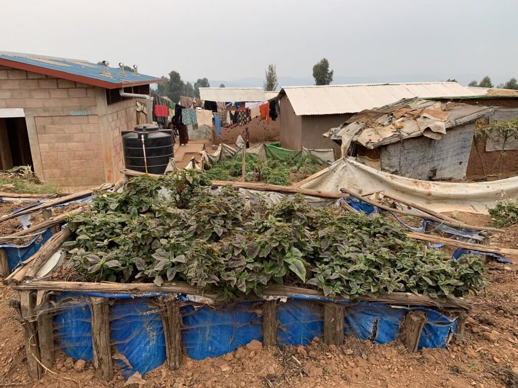 Compassion It - Compassion at a Refugee Camp - Rwanda
